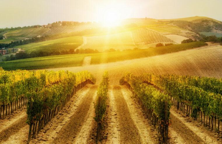 Un viaggio di scoperta sul confine tra Toscana e Marche